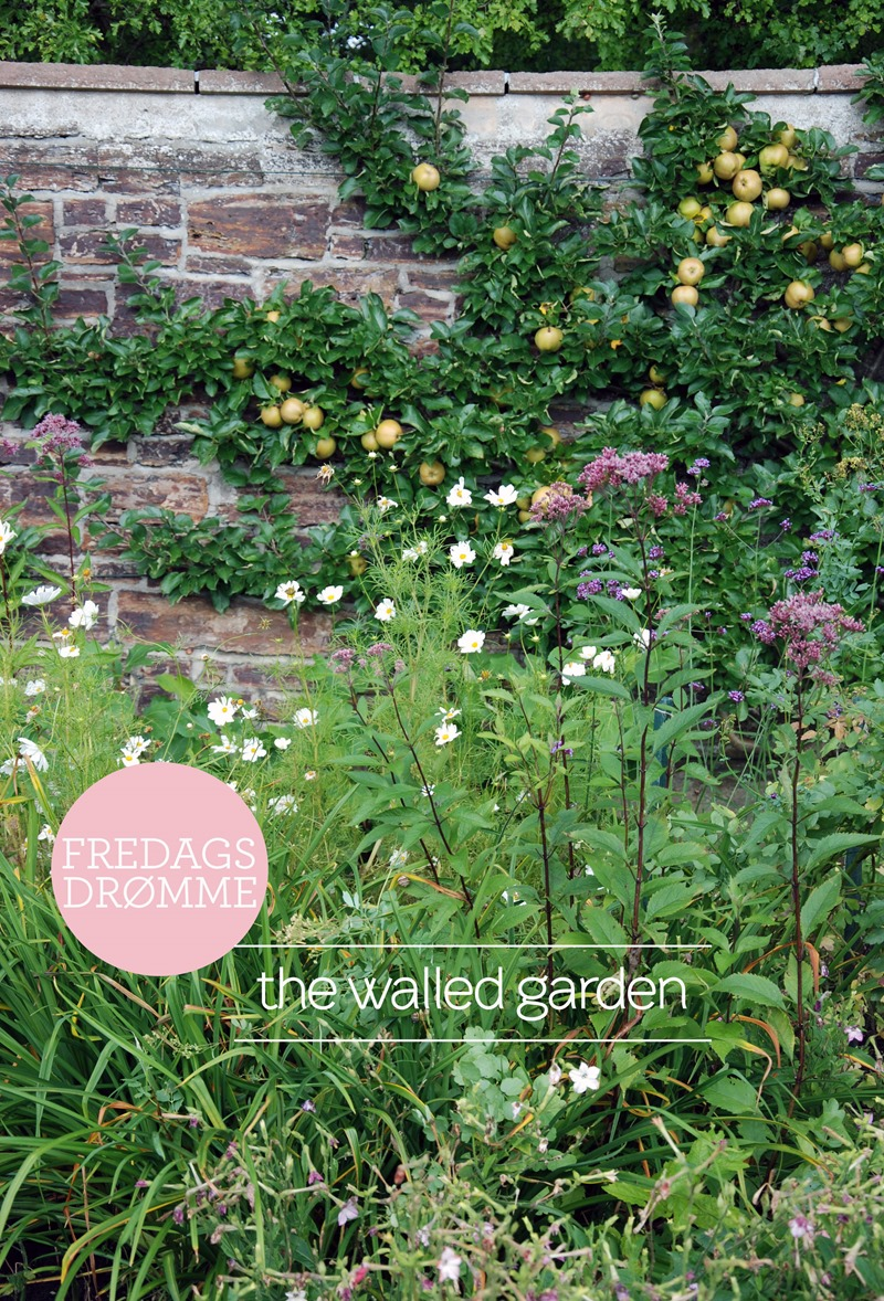 Fredagsdrømme the walled garden Foto Dorthe Kvist Meltdesignstudio