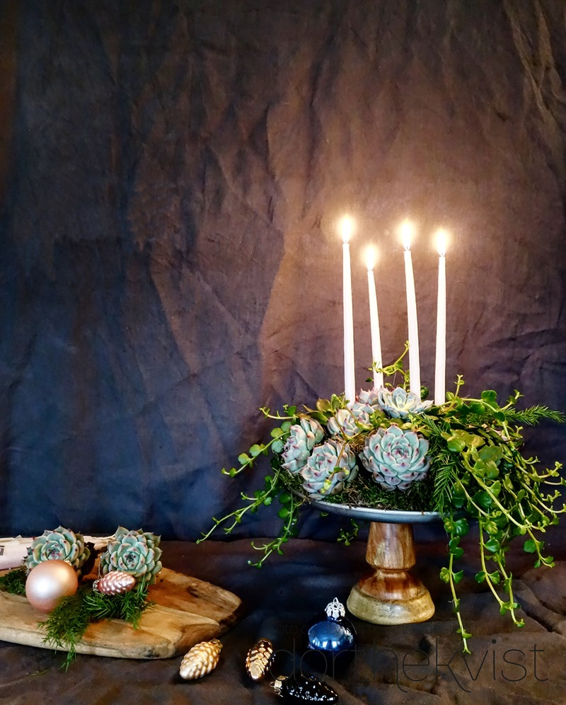 DIY Botanisk advent Foto og styling Dorthe Kvist Meltdesignstudio 2