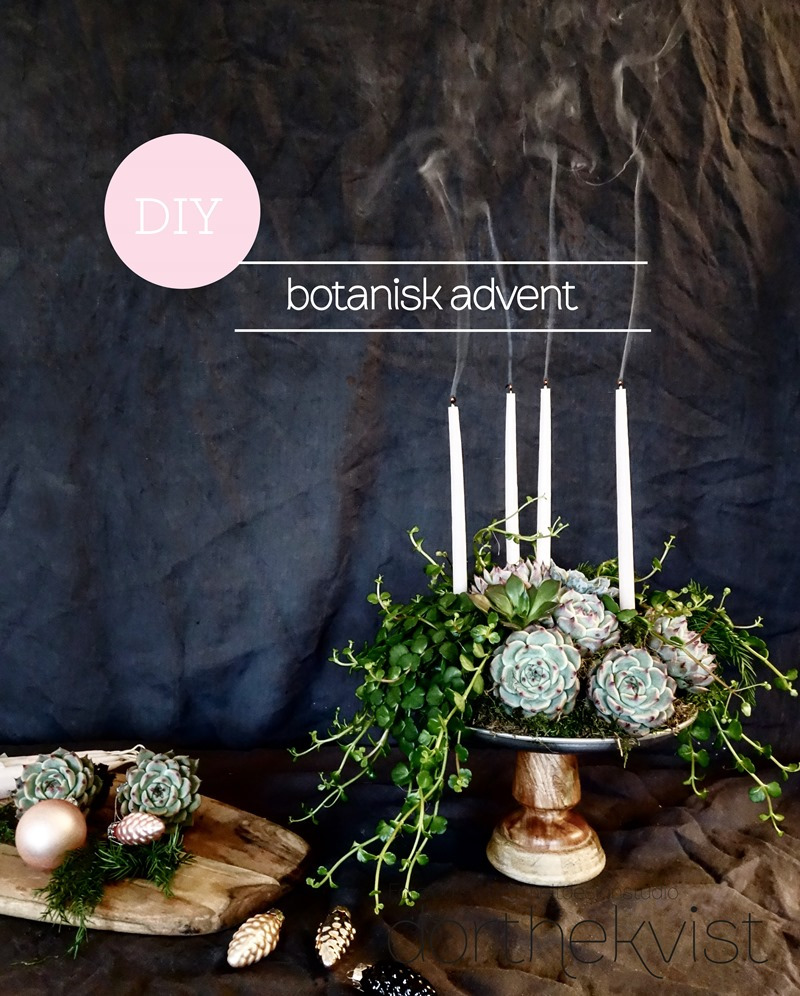DIY Botanisk advent Foto og styling Dorthe Kvist Meltdesignstudio 5